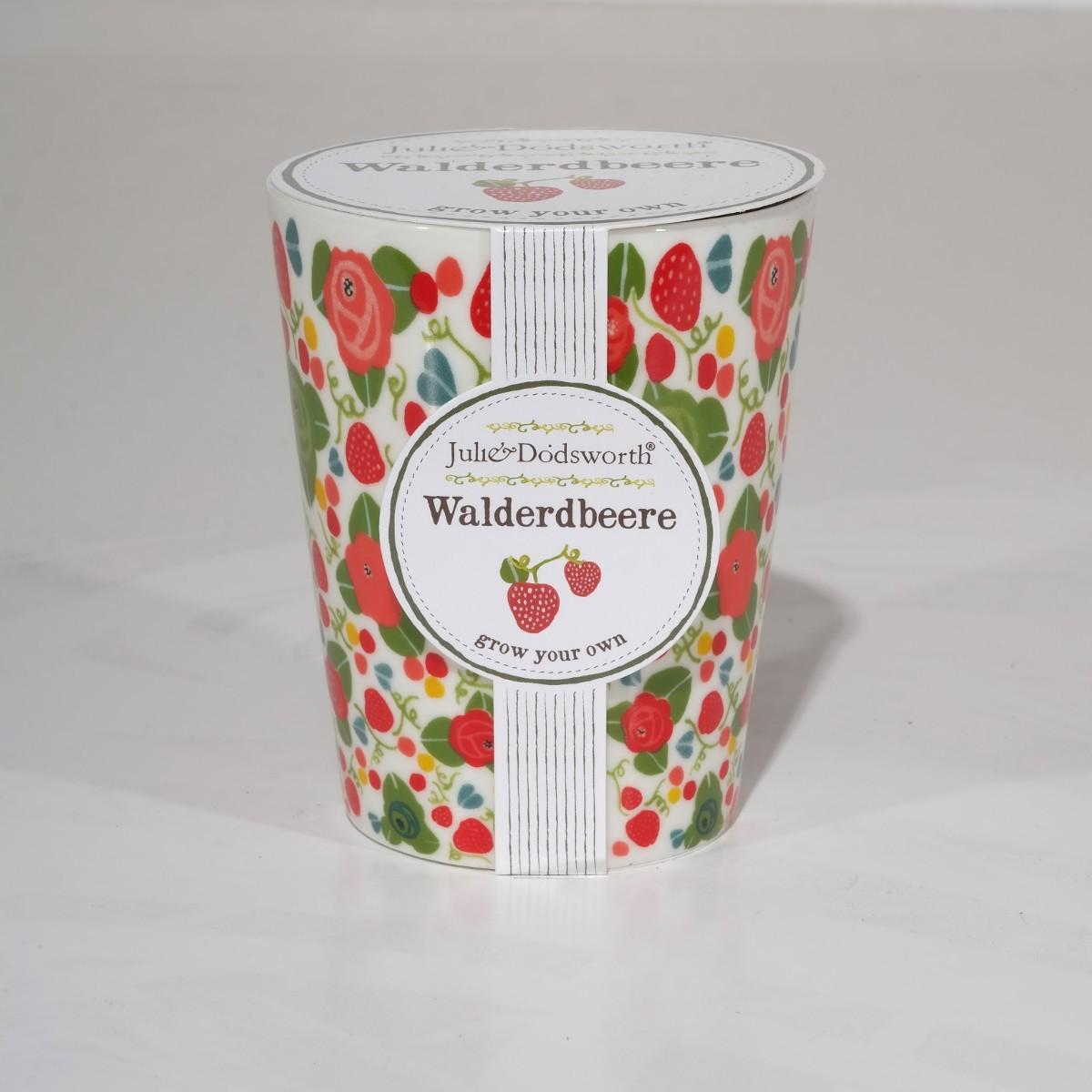 Julie Dodsworth: Süße Tassenpflanze